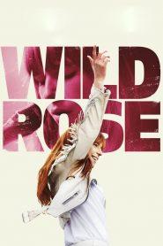 فيلم Wild Rose 2019 مترجم اون لاين