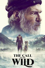 فيلم The Call of the Wild 2020 مترجم اون لاين