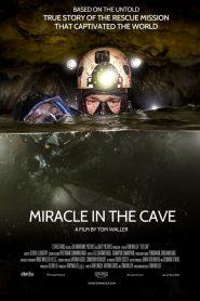 مشاهدة فيلم The Cave 2019 مترجم