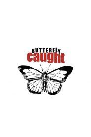فيلم Butterfly Caught 2017 مترجم اون لاين