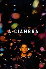 فيلم A Ciambra 2017 مترجم اون لاين