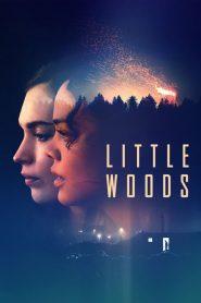 فيلم Little Woods 2018 مترجم